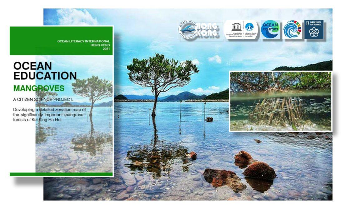 mangrove ecosystems course